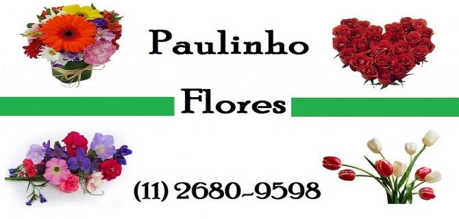 PAULINHO FLORES